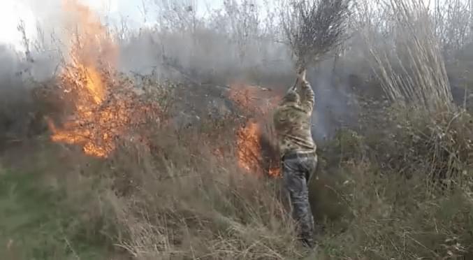 Zjarri brenda Parkut Kombëtar Divjakë – Karavasta rrezikon qindra shpendë e gjallesa