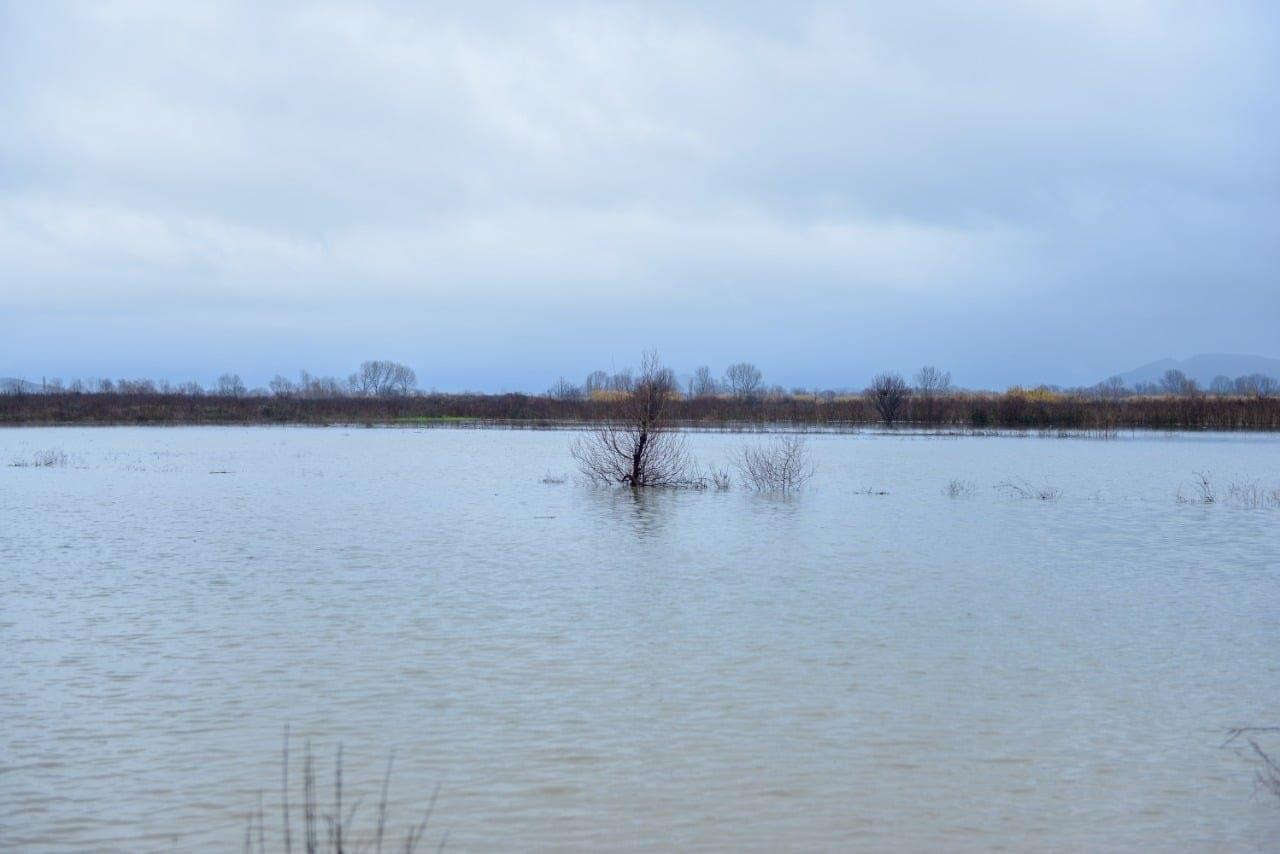 Shumica e vendit gjendet nën ujë, si është parashikimi i motit për ditën e sotme