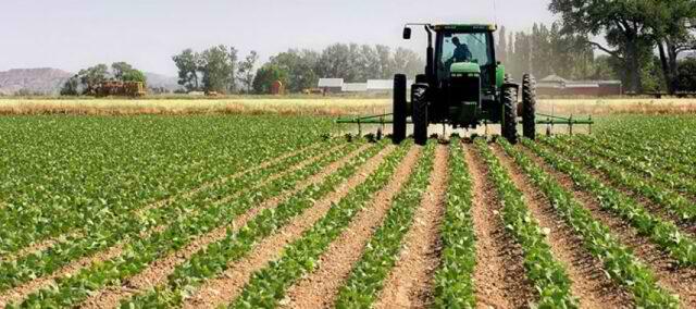 70 mijë fermerë përfitojnë mesatarisht 14 mijë lekë naftë falas nga skema e re ketë vit