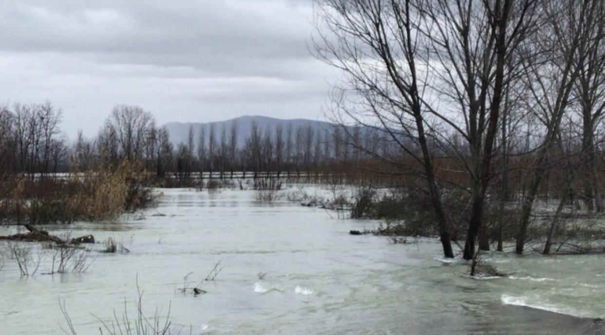 Mbi 5 mijë hektarë tokë e përmbytur në Shkodër, dhjetra shtëpi nën ujë