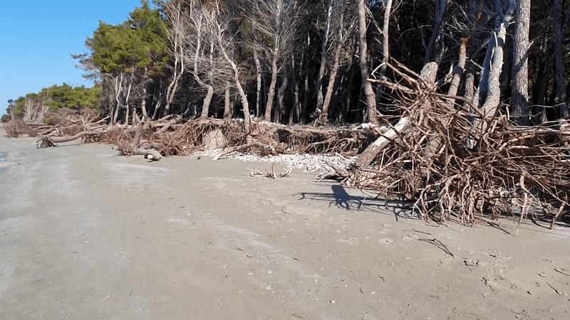 Erozioni kërcënon brigjet e plazhit të vjetër në Vlorë