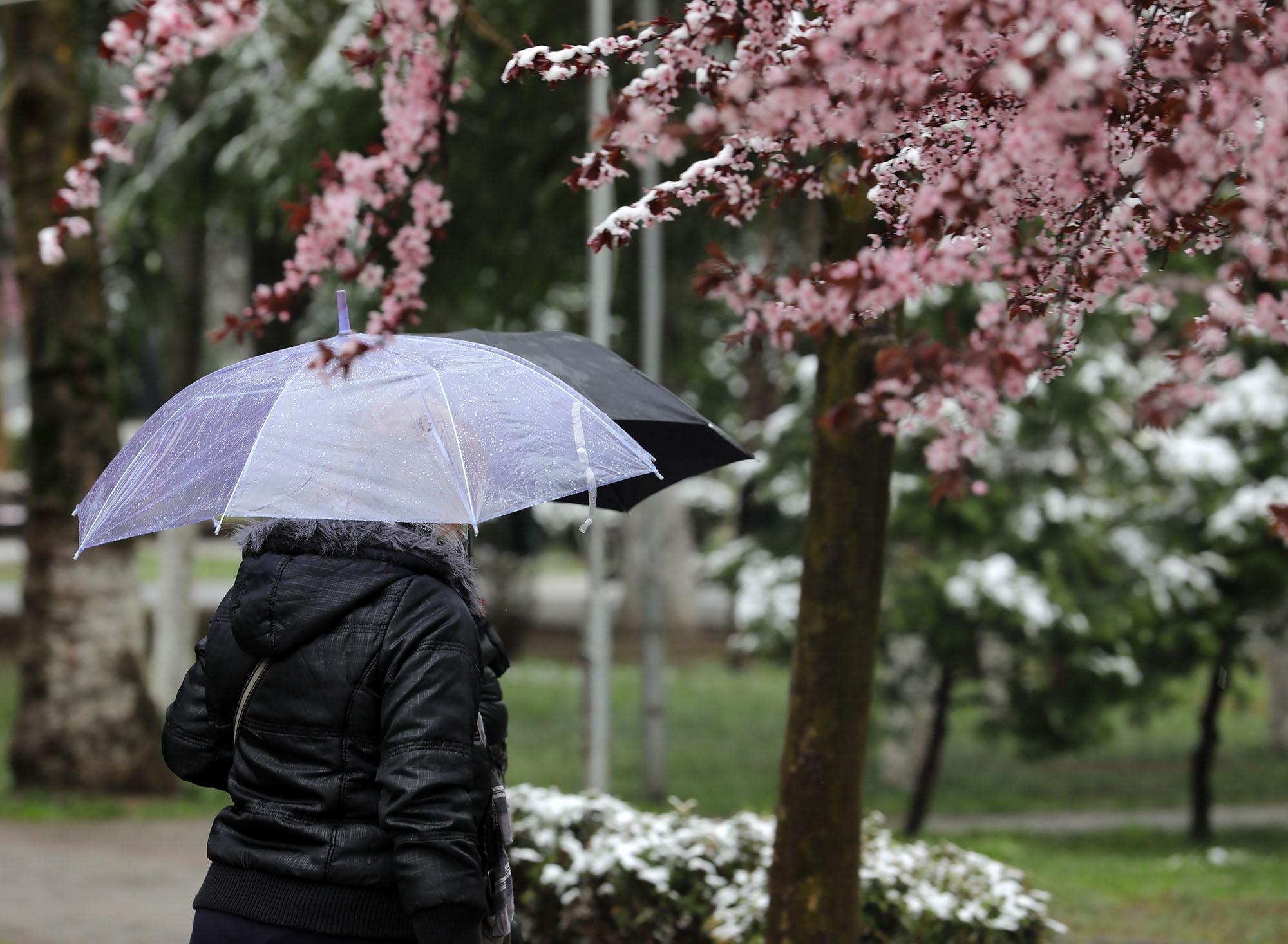 Reshje shiu gjatë gjithë ditës, mësoni si do të jetë moti ditën e sotme