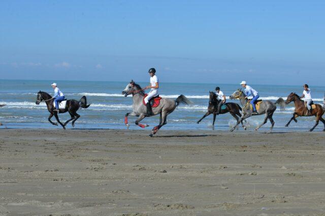 Lajm i mirë për turizmin bregdetar në Fier