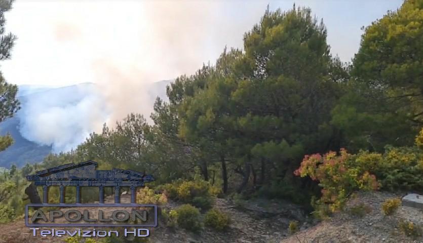 Zjarri përfshin kodrat e Drenies dhe të Lofkëndit.