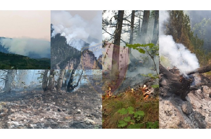 Ndezën zjarr në Parkun Kombëtar të Malit të Tomorrit, në pranga dy shtetas.