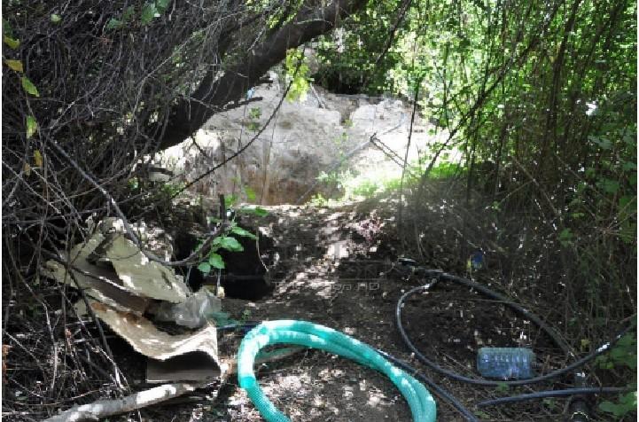 Tentuan të mbillnin hashash në shtëpitë e tyre, 1 i arrestuar dhe 1 i proceduar në Tepelenë