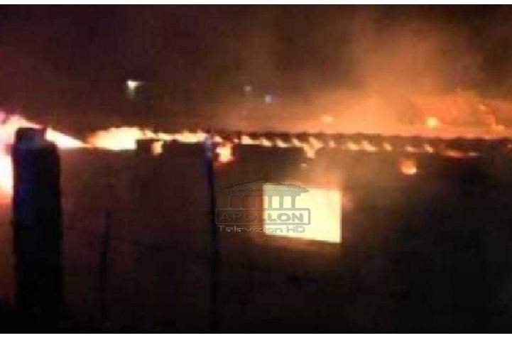 Zjarr i madh në një stallë në Lushnje, digjen të gjitha bagëtitë
