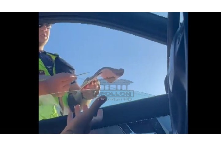 Polici në Berat gjobit të riun pa pasur radar: E mata me sy që ishe shpejt, ndalove 200 metra më tutje!