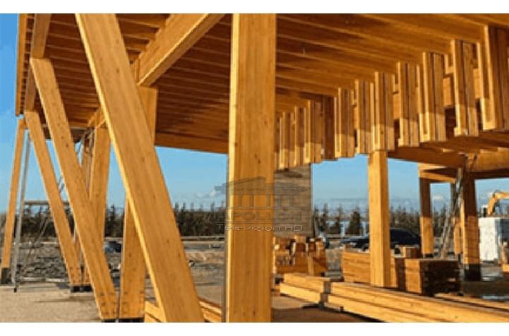 Po ndërtonin pa leje konstruksione prej druri në bregdetare, arrestohen tre persona në Vlorë
