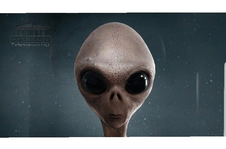 'Udhëtari i kohës': Alienët do të zbarkojnë në Tokë në maj të 2022! Do vijnë në paqe, por SHBA do t'i sulmojë